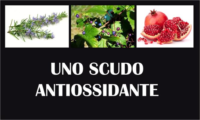 frutta antiossidante per il corpo