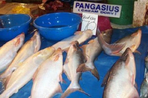 Pangasio ritirato dal mercato: il pesce allevato in acque inquinate