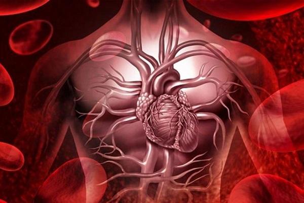 Riskometer l'app che calcola il rischio di ictus e infarto: come funziona?
