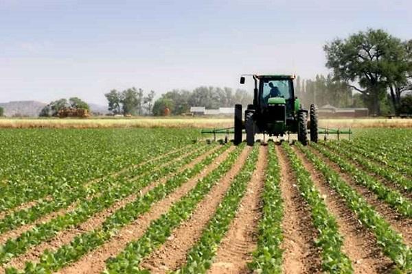 Imu terreni agricoli 2017: esenzioni e calcolo dell'imposta
