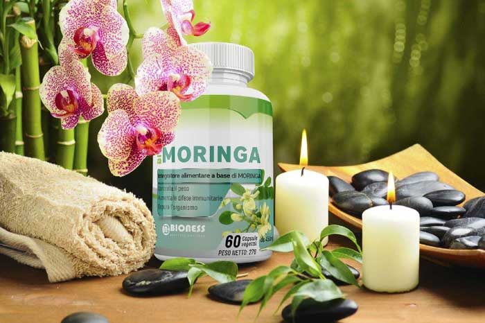 superfood bio moringa