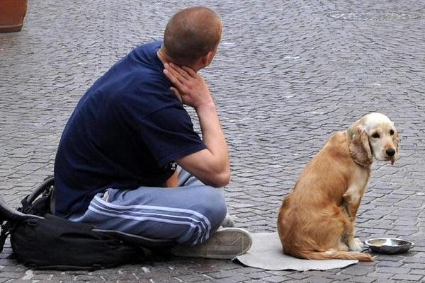 Povertà, i dati Istat fotografano l'Italia: 4,7 milioni di persone in difficoltà