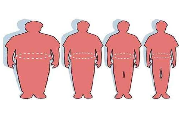 obesità gene bruciagrassi