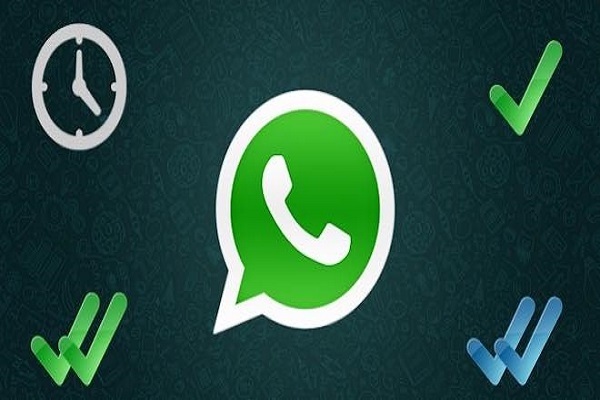 WhatsApp-Business-spunta verde