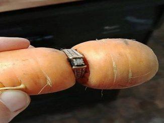 anello fidanzamento carota orto