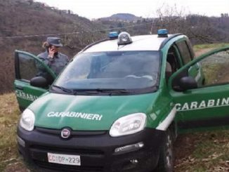 forestali carabinieri