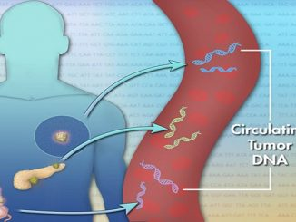 tumori killer dna test sangue Velculescu