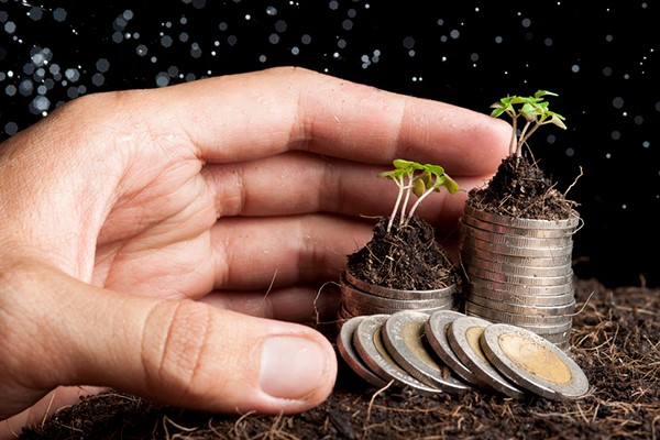 Legge di Bilancio 2018: previsti incentivi assunzioni agricole
