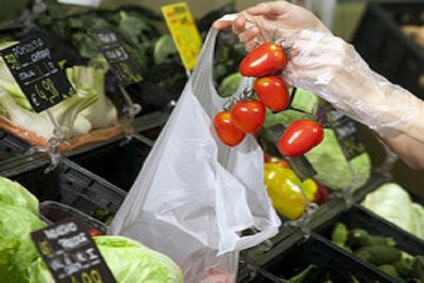 sacchetto ortofrutta a pagamento frutta e verdura bio