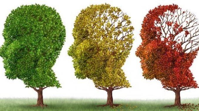 Alzheimer, come lo zafferano può curare la malattia riducendo l'infiammazione del cervello