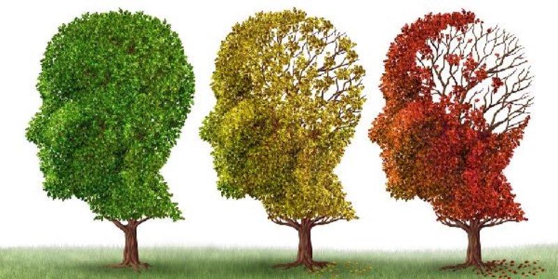 Zafferano alleato per combattere il morbo di Alzheimer