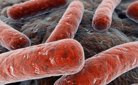 Caso di Tbc al Marconi di Staranzano