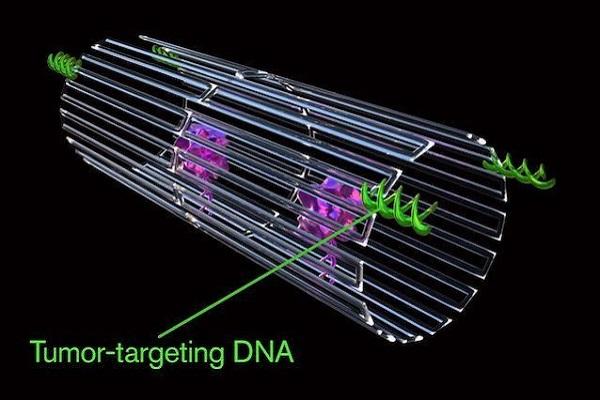 Nanorobot con frammenti di DNA uccidono il cancro