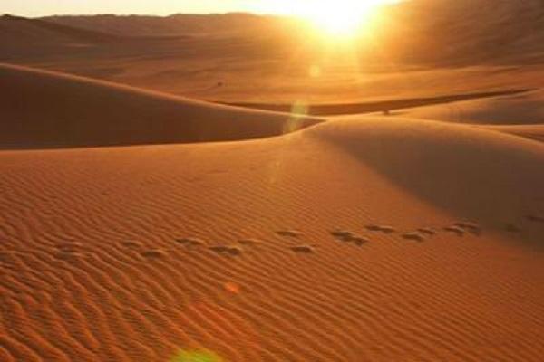 Arriva la sabbia del sahara nel fine settimana curiosit for Colore vento di sabbia deserto