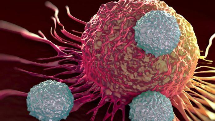 Car-T, terapia cellulare per i tumori: c'è il via libera dall'Europa