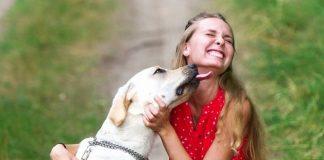 La leccata del cane è pericolosa?