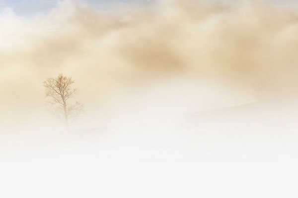 ferrara incidente nebbia