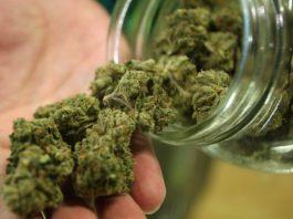 Cannabis light online