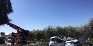roma-albero-abbatte-fiat-panda-morto-uomo-45-anni
