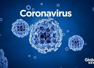 coronavirus torino