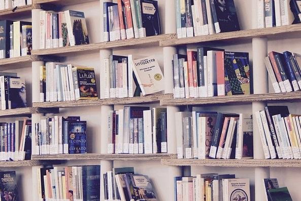 I migliori libri da leggere durante la pandemia